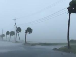 Tajfun Haishen zbliża się do Japonii. Trwa ewakuacja