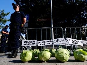 Przed Sejmem rozłożono 356 główek kapusty. Co symbolizują?