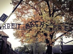 Muzeum Auschwitz ogłosiło konkurs na koncepcję wystawy polskiej