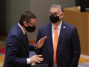 """""""Rząd holenderski chce modyfikacji"""". Komentarz Piotra Müllera"""