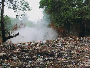 Las tonący w śmieciach! Firma, której klienci płacą za utylizację śmieci, wyrzuciła je do lasu