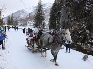 Rząd przeznaczy ponad 700 mln zł na wsparcie dla gmin na terenach górskich
