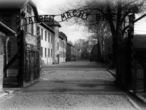 Międzynarodowy Dzień Pamięci o Ofiarach Holokaustu. Obchody 76. rocznicy wyzwolenia KL Auschwitz - tylko online