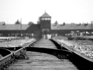 Dyrektor Centrum S. Wiesenthala: W  Niemczech było niewiele woli politycznej, by karać nazistów