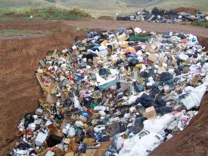Niemieckie odpady transportowane do Polski. Skala procederu jest znaczna