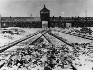 Los Angeles Times: Polska unika swej roli w nazistowskim ludobójstwie. Palade komentuje