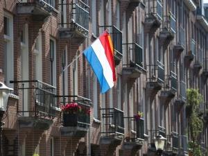 Postępowa Holandia? Żołnierze holenderscy odwołani z ćwiczeń za rasizm