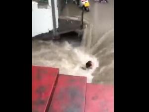 [video] Drastyczne obrazy powodzi w Chinach. W godzinę spadło więcej deszczu niż w 24 godziny w  Niemczech