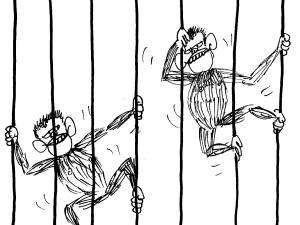 [Nowy rysunek Krysztopy] Małpy