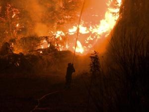 [VIDEO] Polski soft power. Polscy strażacy pomagają Grekom w walce z pożarami