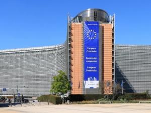 Nie akceptujemy prób podżegania lub przyzwolenia na nielegalną migrację do UE. Mocny komunikat KE ws. sytuacji na granicy