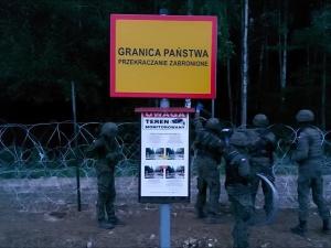 Posłanka Lewicy: Drut kolczasty na granicy z Białorusią to zagrożenie dla zwierząt żyjących po obu stronach granicy