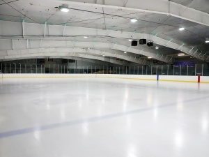 Zasady hokeja na lodzie