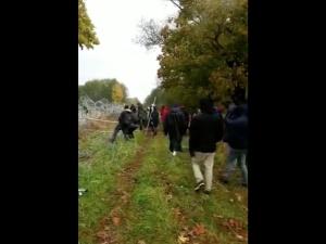 [video] Niszczenie płotu przez osoby na granicy. Min. Błaszczak: Gdyby nie płot...
