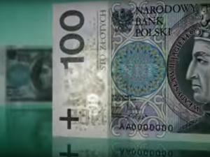 Paweł Janowski: Złoty lepszy od Euro