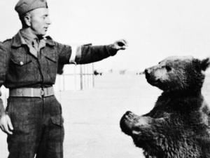 Jerzy Bukowski: Opiekun niedźwiedzia Wojtka podpułkownikiem