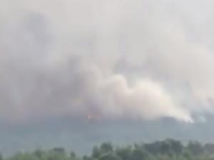Co najmniej 50 osób nie żyje. 200 osób zostało rannych. Bilans ofiar pożarów lasów w Grecji
