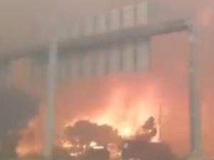 Dwoje Polaków zginęło w pożarze w Grecji – informuje konsul RP w Atenach