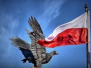 Zerwał polską flagę, podeptał i rzucił psom