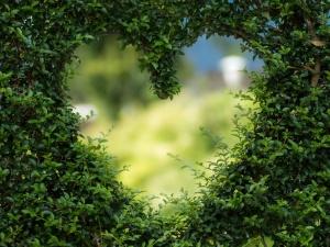 Jerzy Bukowski: Serce najlepiej bije w smogu