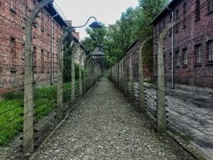 Internauci wysyłają red.Gadowskiemu świadectwa lekceważenia Polaków przez Muzeum Auchwitz