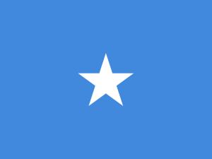 Somalia: Wybuch samochodu-pułapki. Nie żyją dwie osoby