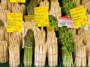 Niemieckie władze sądzą, że przez 500+ Polakom nie chce się zbierać szparagów w Niemczech