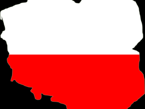 """[Felieton """"TS""""] Waldemar Biniecki: Co możemy zrobić razem dla Polski?"""
