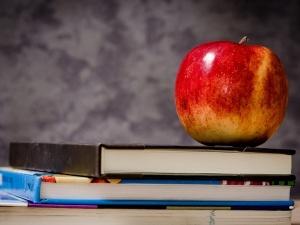 Reforma, czyli co? Opisujemy, kiedy i jak uczniowie zaczną edukację w nowym liceum lub szkole branżowej