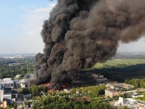 Ekolog: Środowiska ekologiczne straszą katastrofą w przyszłości, a Niemcy DZIŚ kolonizują nas itrują