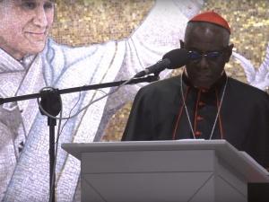 Kardynał Sarah wydał oświadczenie ws. wspólnej książki z Benedyktem XVI. Jest tłumaczenie!