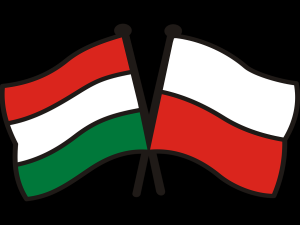 Wymowne. Wzrost produkcji przemysłowej w listopadzie 2019 r. Na czele Polska i Węgry i długo nic...