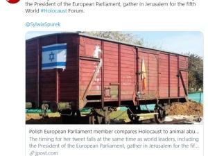 Ups. Jerusalem Post o tłicie Spurek, która opublikowała grafikę krowy w pasiaku i z żółtą Gwiazdą Dawida