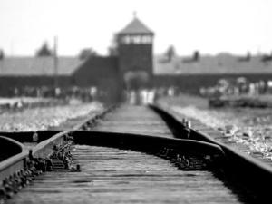 """""""Po obchodach wyzwolenia Auschwitz w Jerozolimie odjęło nam mowę"""". Autorzy #GermanDeathCamps apelują"""