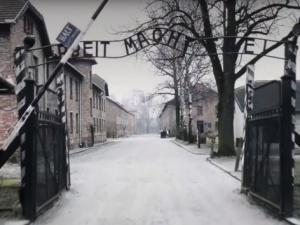 Antysemicka hitlerowska propaganda dostępna na niemieckim Amazonie. Reaguje Muzeum Auschwitz