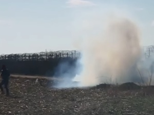 Starcia na granicy grecko-tureckiej. Użyto gazu łzawiącego i granatów hukowych