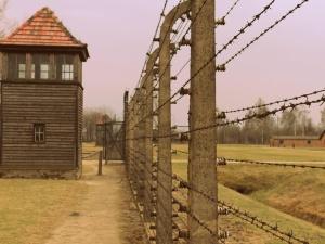"""[video] Agencja AFP o pracy Muzeum Auschwitz na Twitterze: """"Potężne narzędzie w edukacji o Holokauście"""""""