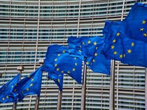 """[video] Prof. Ryba ostro do unijnego komisarza: """"Może lepiej niech nam już powie, kto ma wygrać [wybory]"""""""