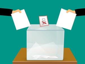 Jerzy Bukowski: Ależ nie głosujcie!