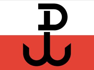 Gmyz: R. Szczepański przedstawiony przez TVN24  jako powstaniec warszawski na świat przyszedł...