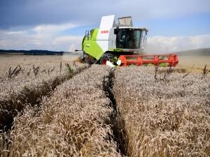 Ekonomista: Polska gospodarka znosi relatywnie dobrze kryzys wywołanypandemią