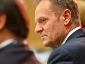 """Tusk komentuje dymisję Szumowskiego. Poseł PiS odpowiada:""""Najlepiej wynagradzanyhejter"""""""