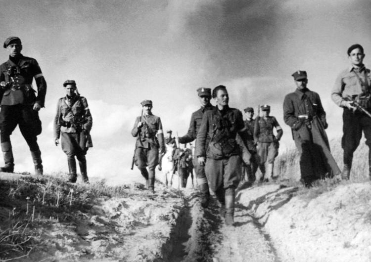 """V Brygada Wileńska AK w marszu [Tylko u nas] """"Ponieważ żyli prawem wilka…"""". Wyklęci znowu wyklinani. Dlaczego wciąż przeszkadzają?"""