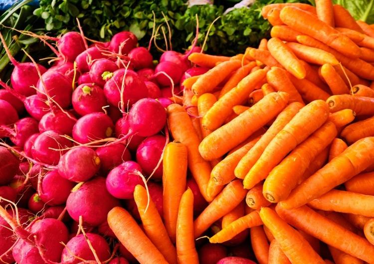 warzywa Warzywa uprawiane z nasion i ich siew – cenne porady