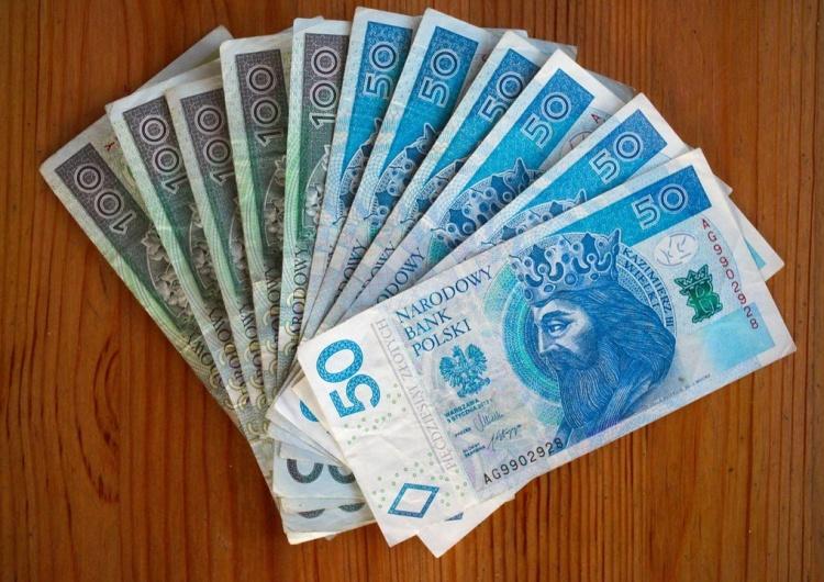 Pieniądze, zdjęcie ilustracyjne Ekonomiści: Polska skorzysta na zmianach w światowych łańcuchach dostaw