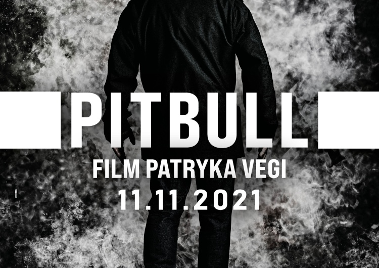 Pitbull Powrót legendy! Zobacz plakat i zwiastun PITBULLA (11 listopada w kinach)