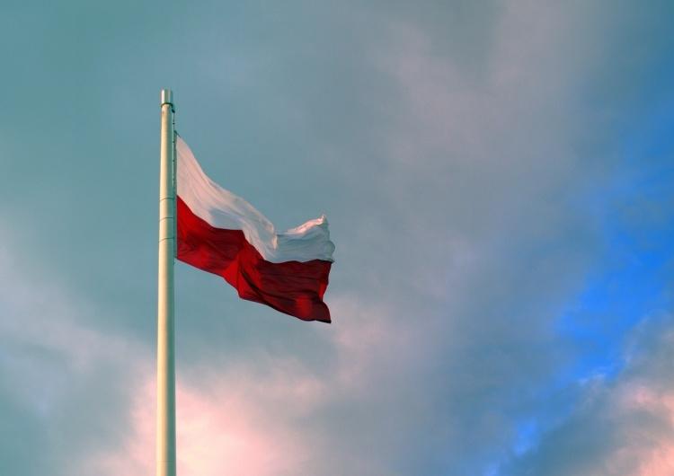 Waldemar Biniecki: Gra o Trójmorze a propolski lobbing