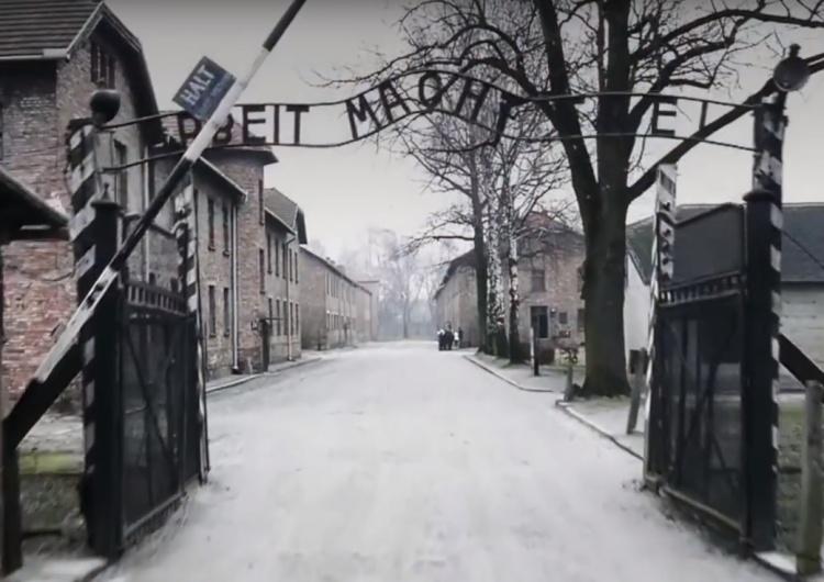 B. Więźniarka: Zastanawiam się czy dyrektor Muzeum Auschwitz słucha przemówień Prezydenta Dudy?