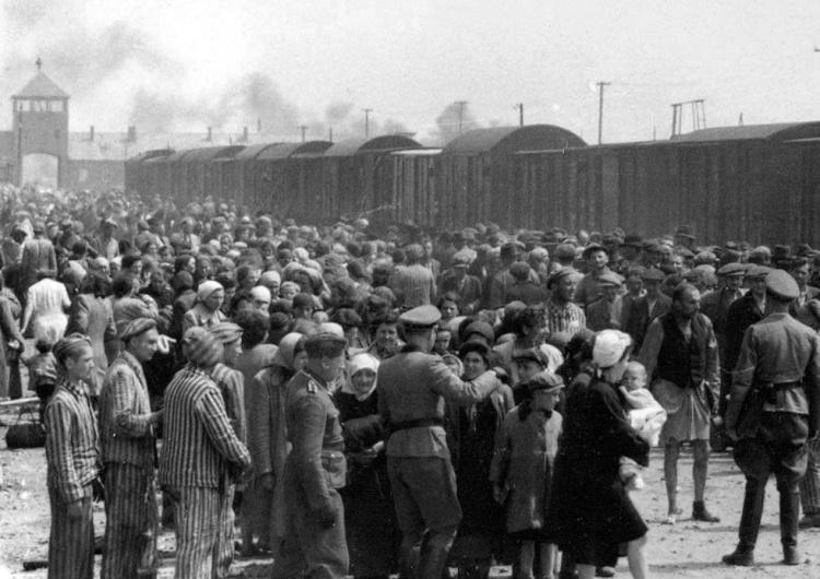 Szwedzi chcą mieć własne Muzeum Holokaustu... z Polską jako negatywnym bohaterem
