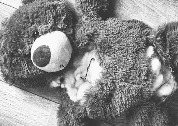 Molestowali niemowlęta. Radzili jak uśpić dziecko. 30 tys. podejrzanych w aferze pedofilskiej w Niemczech